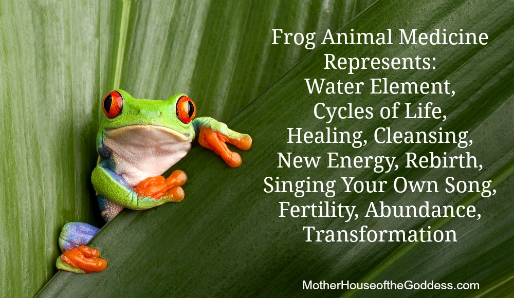 Frog Animal Medicine MotherHouse of the Goddess