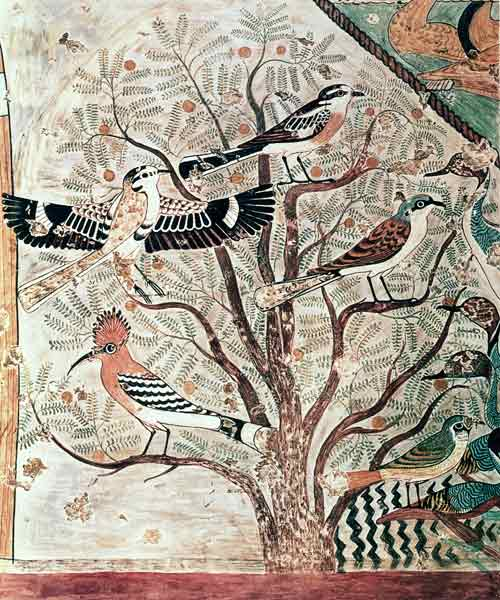 Birds in an acacia tree, from a Middle Kingdom tomb