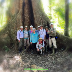 Vision Quest to Peru with Mona Rain - Group in Rain Forest