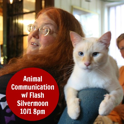Animal Communication with Flash Silvermoon on Goddess Alive Radio