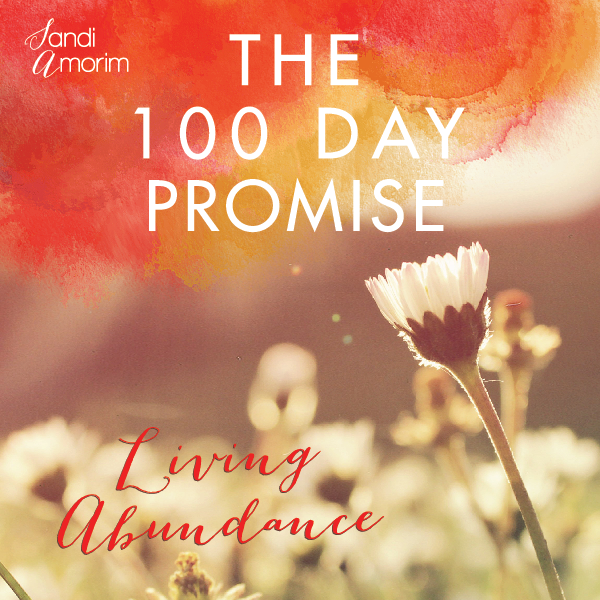 the 100 day promise sandi amorim living abundance