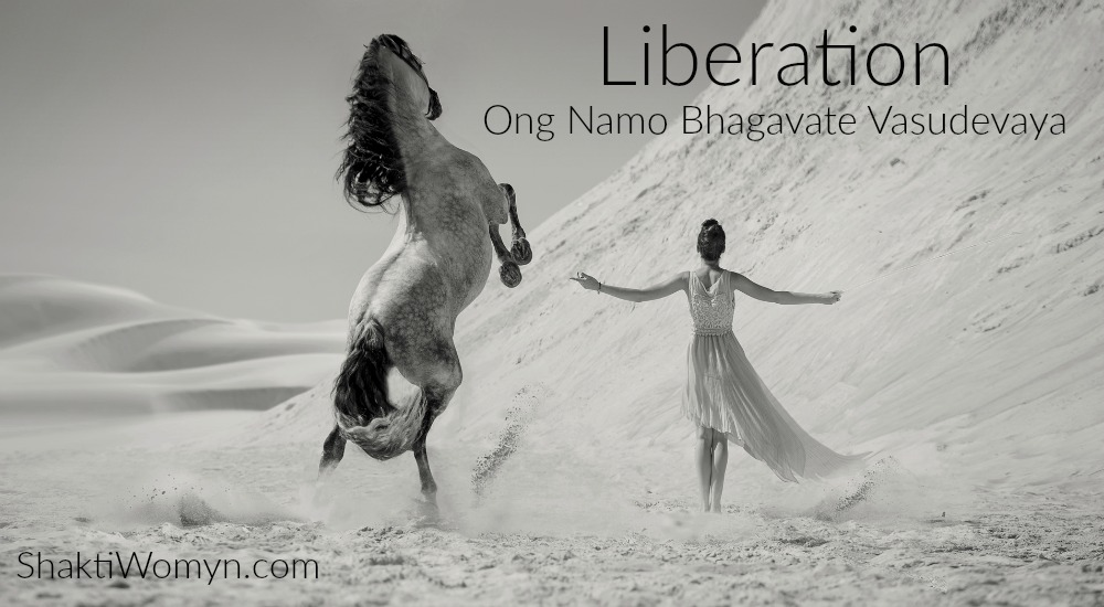 Liberation Power Word and Om Namo Bhagavate Vasudevaya Mantra for 2016