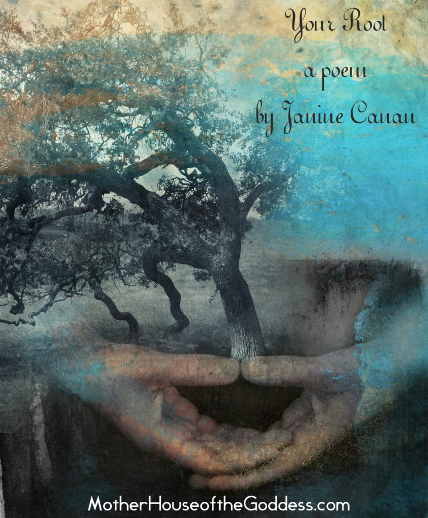 Your Root - a Poem by Janine Canan on MotherHouse of the Goddess