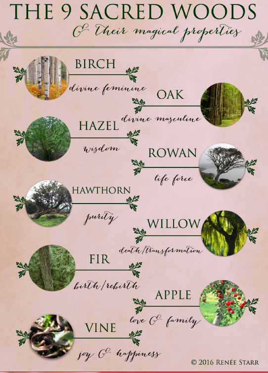 The Nine Sacred Woods and Their Magical Properties