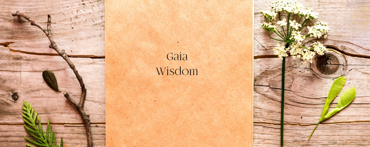 herbal Notebook Gaia Wisdom