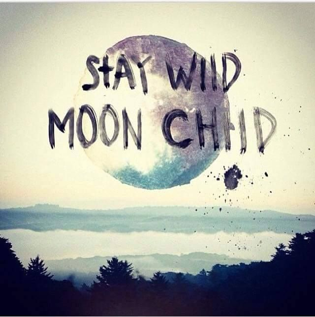 stay wild moon child pinterest