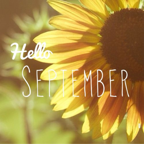 hello september sunflower