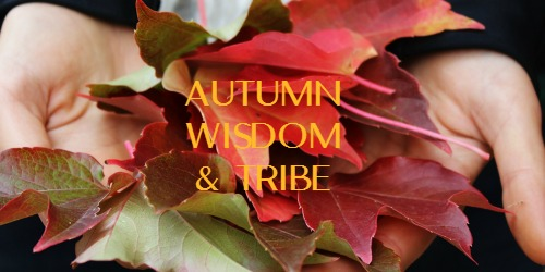 motherroot-autumn-wisdom-and-tribe