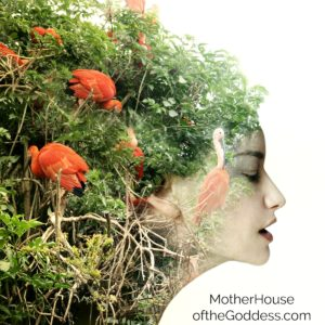 Woman and Nature – Our Bodies are Ourselves by Carol P. Christ
