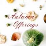 MotherRoot – Autumn Equinox Offerings
