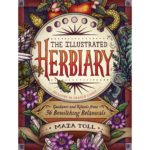 Goddess Alive Radio – Interview with Author Maia Toll and the Illustrated Herbiary (And a FREE COURSE)