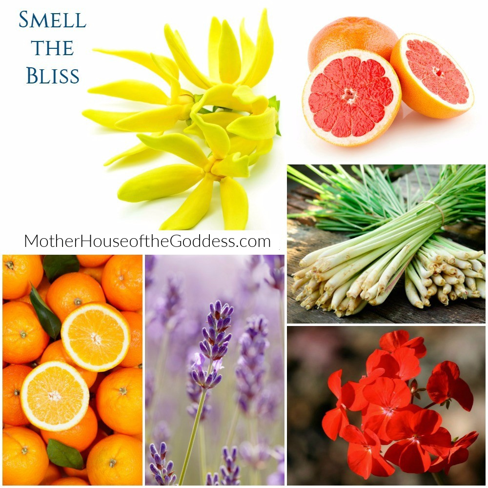 Bliss List - Smell the Bliss Essential Oils Kimberly F Moore MotherHouse of the Goddess